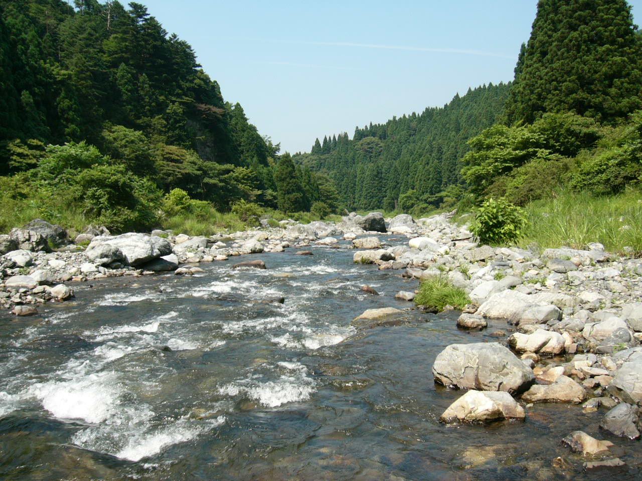 やってきました夏、 いってきました川遊び!。_b0133403_13341941.jpg