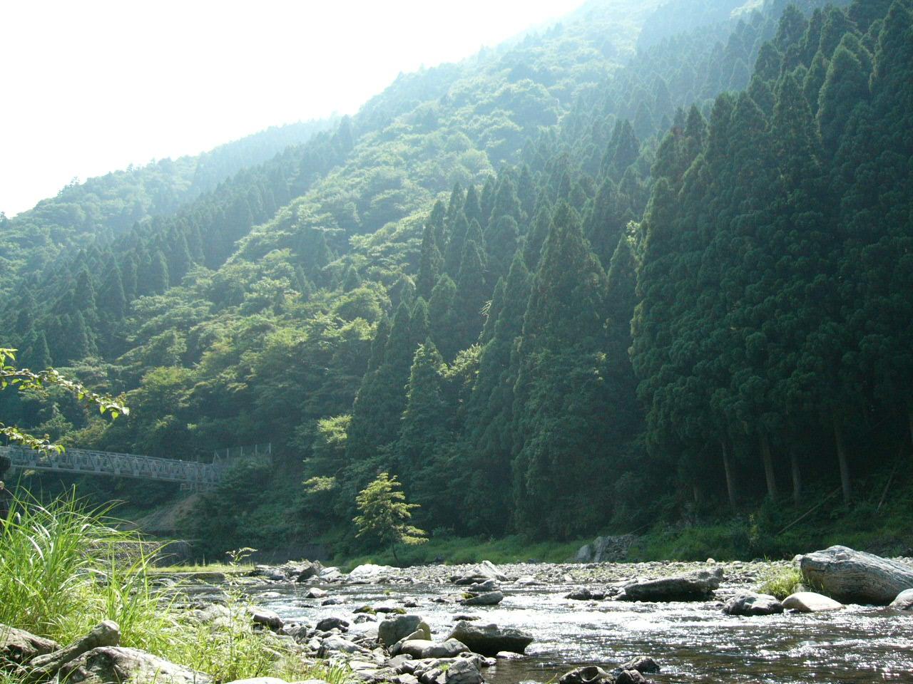 やってきました夏、 いってきました川遊び!。_b0133403_13351476.jpg