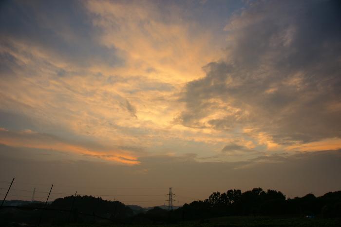 梅雨明け前 日曜の夕_e0077521_21294768.jpg