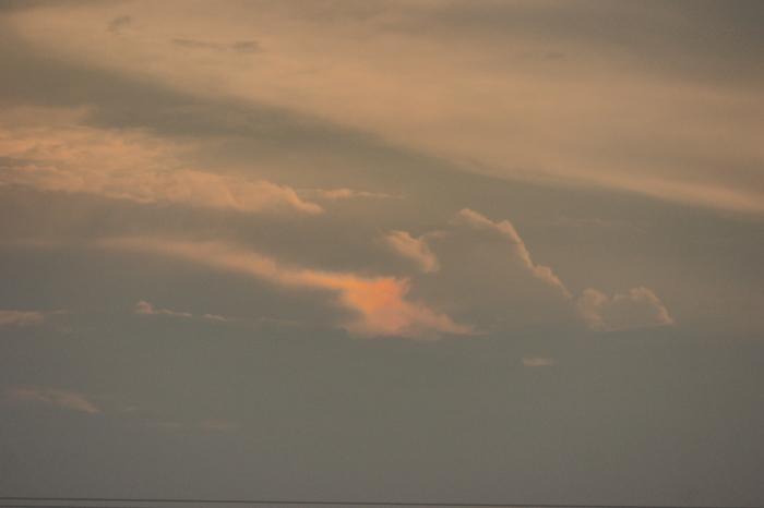 梅雨明け前 日曜の夕_e0077521_21312267.jpg
