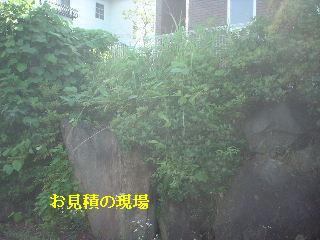 f0031037_1452509.jpg