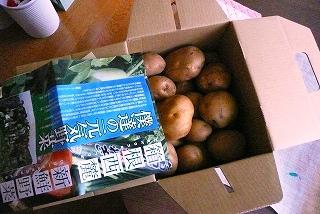 三島 馬鈴薯_c0087349_5483360.jpg
