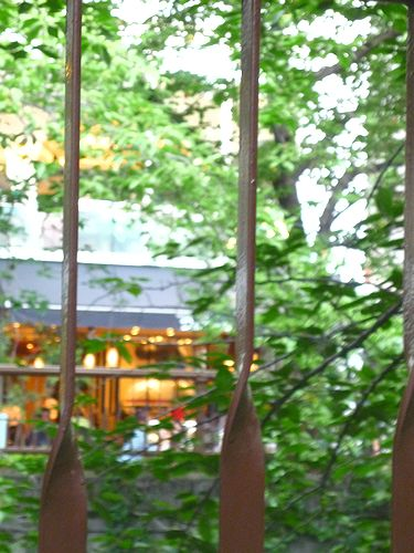 Dall\'orto (ダ・オルト) 目黒川をのぞむ菜園発オーガニックの本格イタリアンレストラン* *。:☆.。†_a0053662_2130890.jpg