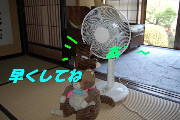 b0059978_19425732.jpg
