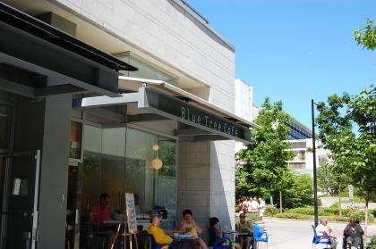 コールハーバーでエスプレッソ。 「Blue tree cafe」_d0129786_13405138.jpg