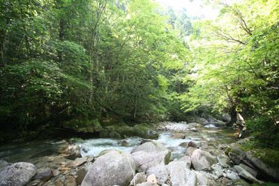 庄川に行ってきましたⅣ_f0166390_2311599.jpg