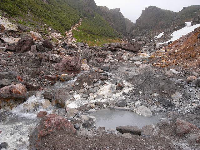 7月8日、北鎮岳から中岳温泉周辺で見た花等_f0138096_12503688.jpg