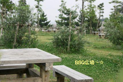 b0021297_2152292.jpg