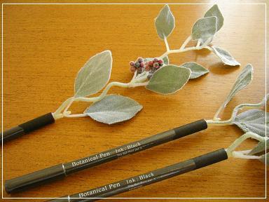 アネモネペン♪ デージーペン♪ エドワーディアンペン♪_b0102217_12351493.jpg