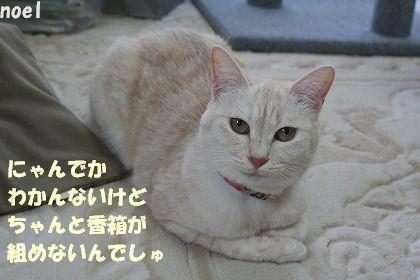 f0063729_1422324.jpg