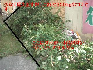 f0031037_18152054.jpg