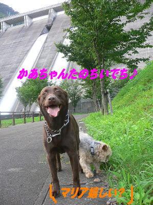 d0013645_12145385.jpg