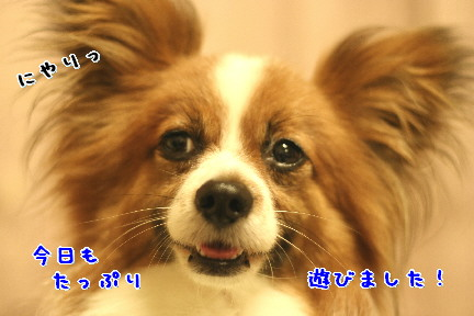 d0013149_1058828.jpg