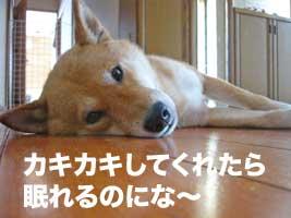 いっちゃんDay_b0057675_12221394.jpg