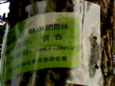 ★Rainが新しいアルバムを直接プロデュース_c0047605_15404263.jpg
