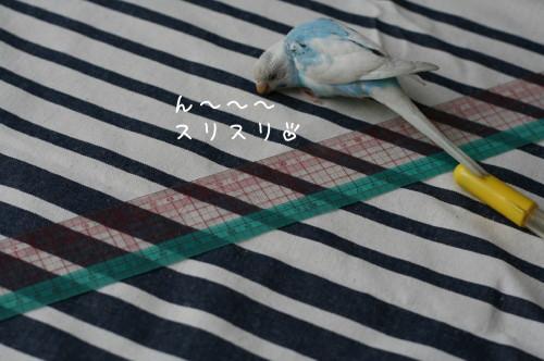b0143835_16305862.jpg
