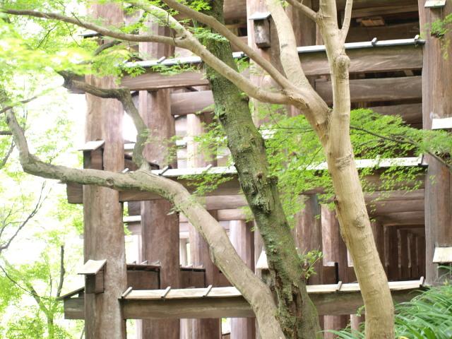 京都旅・清水寺_b0159731_2102840.jpg