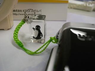 Suicaペンギンの標本_c0147448_13494375.jpg