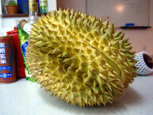 ドリアン, a durian fruit