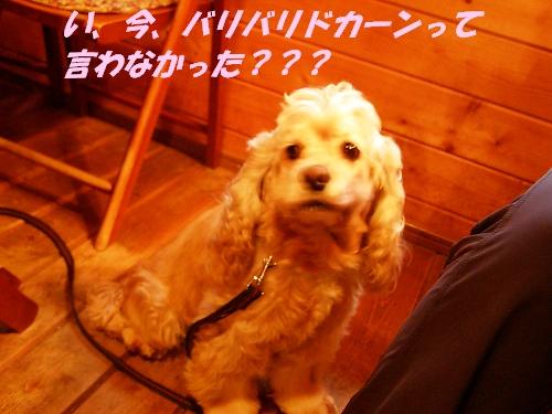 b0067012_12324034.jpg