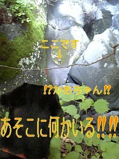 来春と私は・・・_f0148927_20204744.jpg