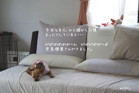c0081276_10481339.jpg