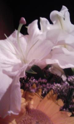 花のエロス_f0168392_1584536.jpg
