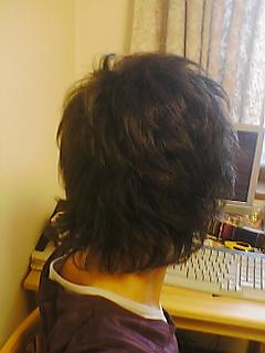 f0065195_15385595.jpg