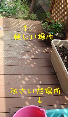 c0070298_107352.jpg
