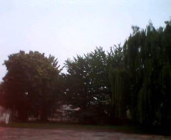 朝の教育大_b0106766_1759150.jpg