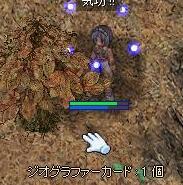 f0158738_2129721.jpg