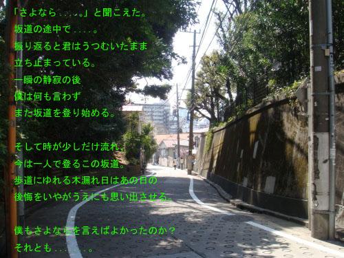f0173549_11104648.jpg