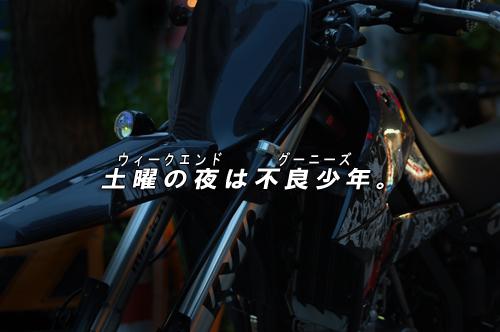 d0099181_1550121.jpg