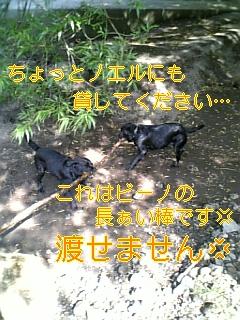 f0148927_16154212.jpg