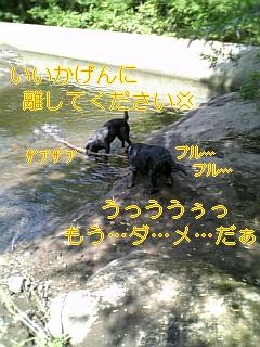 f0148927_16182987.jpg