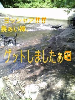 f0148927_16193879.jpg