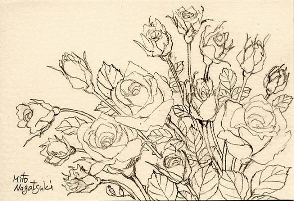 薔薇たちの絵~水彩画~_b0089338_8153364.jpg