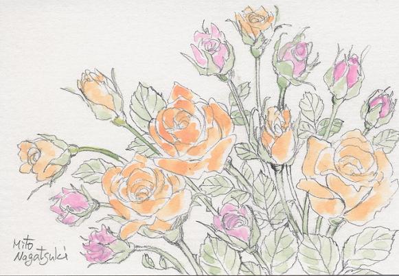 薔薇たちの絵~水彩画~_b0089338_8154927.jpg