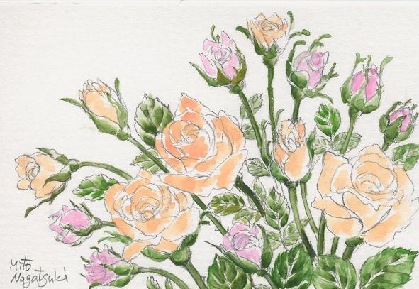 薔薇たちの絵~水彩画~_b0089338_8163753.jpg