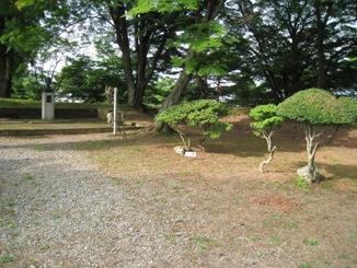 亀ケ城に立ち寄る_a0087378_21581583.jpg