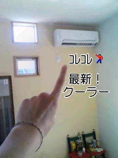 d0134599_931780.jpg