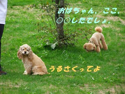 b0067012_1223056.jpg