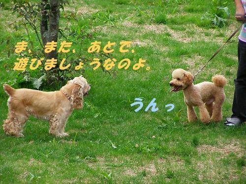 b0067012_1224498.jpg