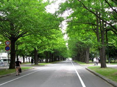 花を訪ねて4 北海道大学_e0048413_150253.jpg