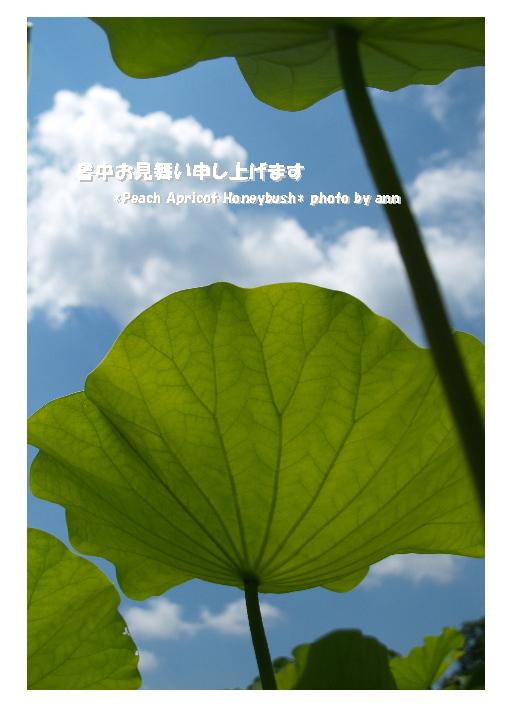 b0126044_1042555.jpg
