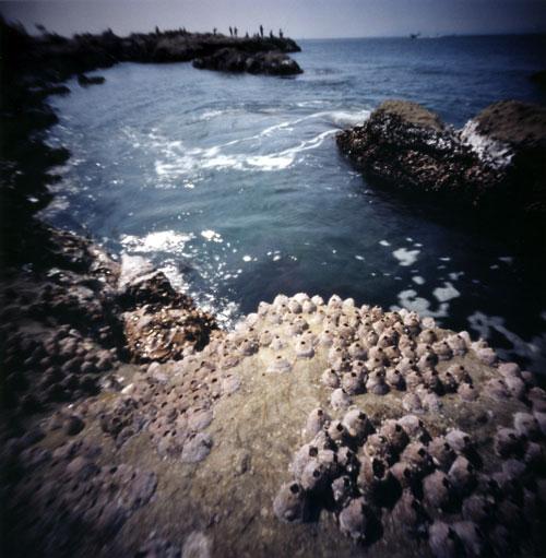 江ノ島の岩場とお台場 ピンホール写真 Pinhole Photography_f0117059_22283868.jpg