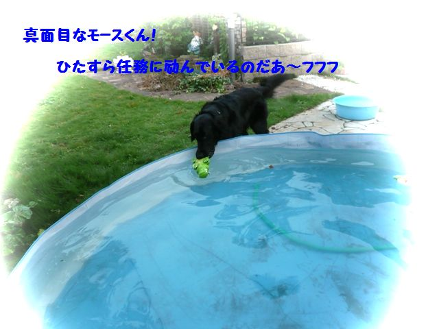 c0134862_0583431.jpg