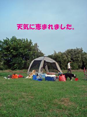 f0132070_2157924.jpg