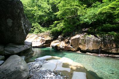 荘川に行ってきましたⅤ_f0166390_20222115.jpg
