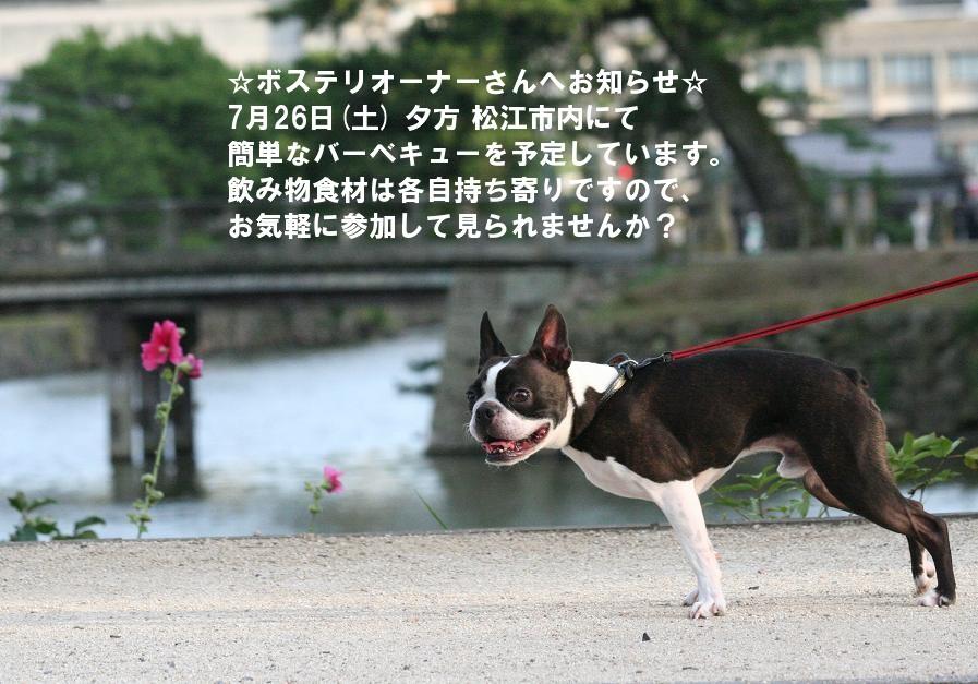 b0100498_14295537.jpg